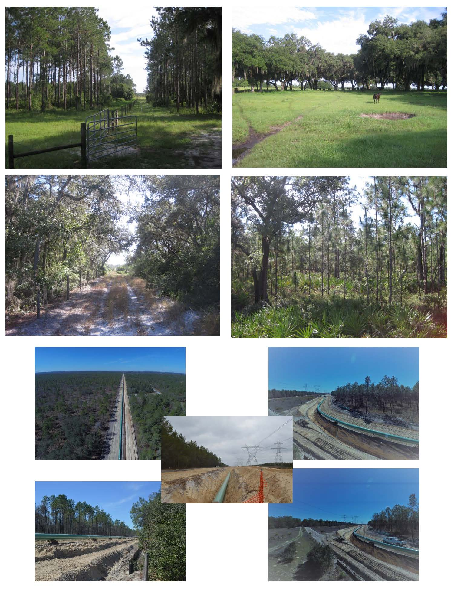 Sabal Trail Pipeline: Multi-Generational, Legacy Ranch (Sumter County, FL)
