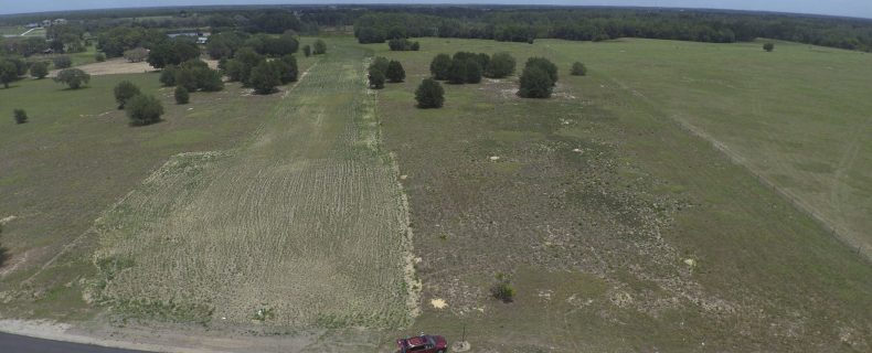 Eminent Domain Suit with Sabal Trail Pipeline